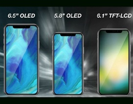 """Apple sẵn sàng với """"bộ ba"""" iPhone mới, nhưng gặp khó trong cách đặt tên"""