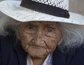 Bí quyết sống thọ của cụ bà 118 tuổi: Thích ăn bánh, hát dân ca và chơi với gà