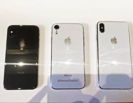Ba mẫu iPhone mới tiếp tục bị lộ ảnh và video trên tay