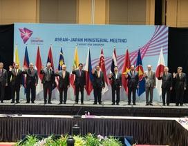 Việt Nam giữ vai trò điều phối quan hệ ASEAN - Nhật Bản