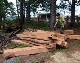 Chấm dứt dự án du lịch thu tiền trái phép của khách tham quan tại Đắk Nông!