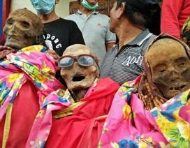 Xem xác chết diễu hành ở Indonesia