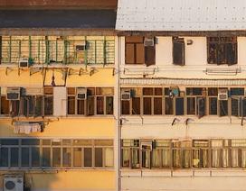 12 điều thú vị trên các mái nhà ở Hồng Kông