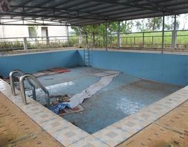Sẽ vận hành lại hồ bơi hơn 700 triệu đồng bỏ không 4 năm