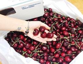 Cherry VIP sang chảnh giá triệu bạc, tuần vẫn bán vài trăm kg cho đại gia