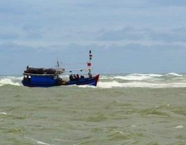 Kịp thời cứu 2 ngư dân bị nạn trên biển