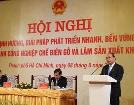 """Gỗ rừng trồng của Việt Nam đang bị """"ăn xổi"""""""
