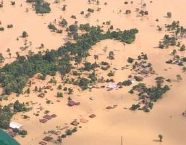 """Hơn 2 tuần sau vụ vỡ đập tại Lào, cổ phiếu nhà thầu Việt Nam """"vụt sáng"""""""
