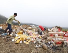 Tiêu hủy nhiều tấn cà rốt, tỏi… Trung Quốc nhập lậu vào Đà Lạt
