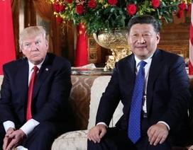 Bất ngờ lý do người Trung Quốc đổ xô xem bói ngày sinh ông Trump và ông Tập