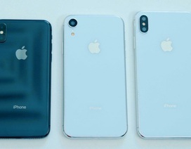 Nhà mạng Trung Quốc để lộ tên gọi iPhone mới: 'iPhone XC', 'iPhone XS Plus'