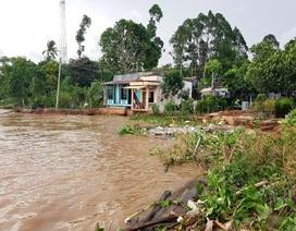 """Sông """"ngoạm"""" bờ 25m, """"ăn"""" vào móng nhà , khẩn cấp di dời 11 hộ dân"""