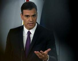 """Thủ tướng Tây Ban Nha """"khốn đốn"""" vì nghi án đạo văn"""