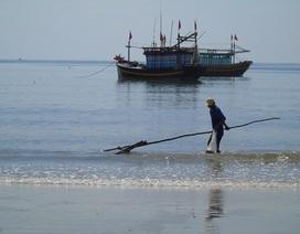 Hơn 500 trường hợp kê khống thiệt hại môi trường biển, nhận gần 9 tỷ đồng