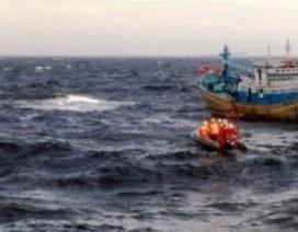 Thuyền trưởng tàu cá rơi xuống biển mất tích
