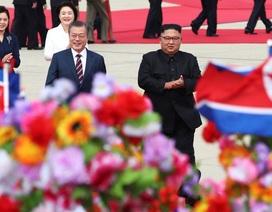 """Người Triều Tiên đón Tổng thống Hàn Quốc trong """"rừng"""" cờ, hoa"""