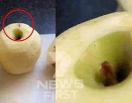 Úc: Tìm thấy cả kim khâu trong quả táo