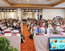 Nhiều phát hiện khảo cổ học lớn tại Việt Nam được công bố