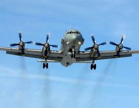 """Nga công bố thông tin """"sốc"""" về vụ máy bay Il-20 bị bắn rơi"""
