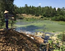 Vụ cá chết trắng: Thủ phạm là nước rò rỉ từ bãi rác?