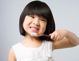Việt Nam là 1 trong những quốc gia có tỉ lệ bệnh nha chu cao nhất vùng châu Á - Thái Bình Dương