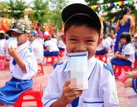 Chuyên gia kinh tế: Nên tổ chức đầu thầu Đề án sữa học đường