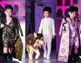 Độc đáo màn trình diễn thời trang trẻ em với thú cưng tại Hà Nội