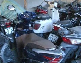 Hàng trăm xe cầm cố ở các tiệm cầm đồ sai quy định