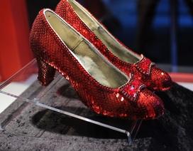 """Tìm lại được đôi giày """"triệu đô"""" sau 13 năm bị đánh cắp"""