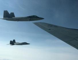 """""""Chim săn mồi"""" F-22 của Mỹ chặn """"Gấu Nga"""" Tu-95"""