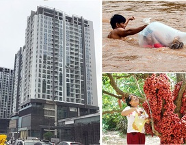 Động đất, người Hà Nội tháo chạy khỏi cao ốc và học sinh chui túi nilon vượt suối