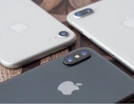 Dự đoán chân dung loạt iPhone mới sắp ra mắt qua tin đồn