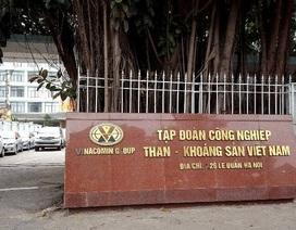 Quy hoạch cán bộ lãnh đạo TKV: Bổ sung cán bộ kế cận chức danh Chủ tịch, Tổng giám đốc