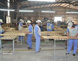 Tuyên Quang: Chú trọng công tác an toàn vệ sinh lao động