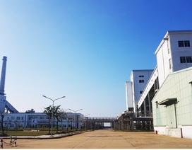 """Quảng Nam vào cuộc kiểm tra """"nhà máy nghìn tỷ đắp chiếu"""" theo chỉ đạo của Thủ tướng"""