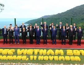 2017 - một trong những năm đối ngoại thành công nhất của Việt Nam