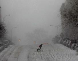 """""""Bom tuyết"""" càn quét Mỹ, ít nhất 22 người chết"""
