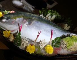 Đại gia ăn 'cá năm mới' Nhật: Truyền tai nhau, sống thọ thêm 5 tuổi