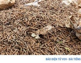 Chủ cơ sở phế liệu tiết lộ nguồn gốc 6 tấn đầu đạn ở Hưng Yên