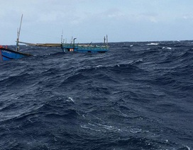 Đề nghị khen ngư dân dũng cảm cứu người ở Hoàng Sa