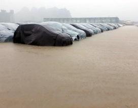 Xe Hyundai giảm giá vì bị ngập nước?
