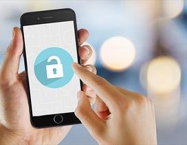 Tất cả iPhone, iPad đều bị ảnh hưởng bởi lỗi bảo mật nghiêm trọng