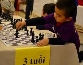 Gần 400 kỳ thủ nhí tham gia giải cờ vua nhanh 2018
