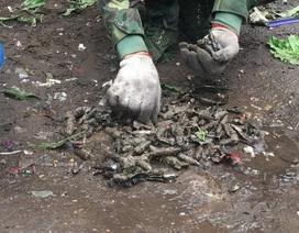 Vụ nổ kinh hoàng ở Bắc Ninh: Thu 6,7 tấn đầu đạn, kim loại