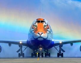 Ngạc nhiên với cách biến hóa độc đáo của máy bay Nga