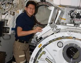 Cao thêm 9 cm, phi hành gia Nhật Bản lo không thể trở về Trái Đất