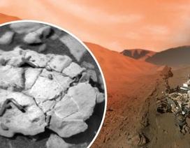 Xe tự hành của NASA phát hiện hóa thạch độc nhất trên Sao Hỏa