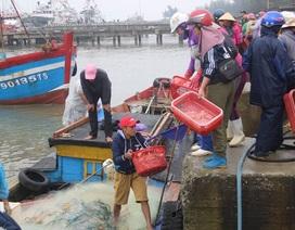 Ngư dân phấn khởi vươn khơi đánh bắt hải sản đầu năm