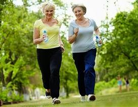 Người cao tuổi có thể dựa vào tập thể dục để giảm thiểu sự ốm yếu tàn tật