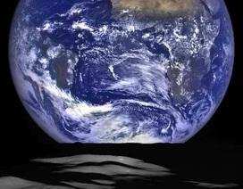 Chỉ với hai người có thể khôi phục dân số thế giới không?